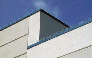 Bird Spikes, Grey Building